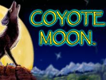 Луна Койота – автомат запускают онлайн бесплатно